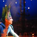 Boletas Cirque du Solei - Varekai